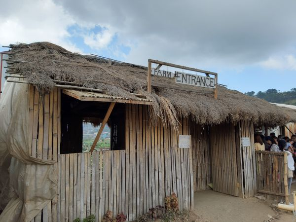 Old Cogon Hut