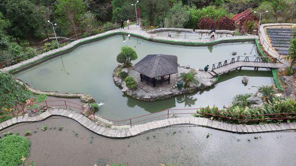 BenCab Museum Nature Park