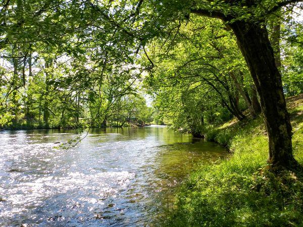 Golden Sunlight - Life on the River - Townsend, TN