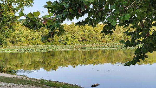 Springfield lake 20210909_173626