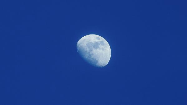 Nice Half Moon