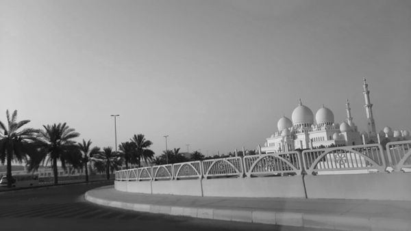 Shaikh Zayed Masjid#1