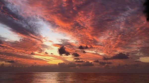 Reddish Clouds