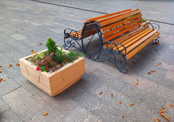 A bench and a flower bed in the city park.