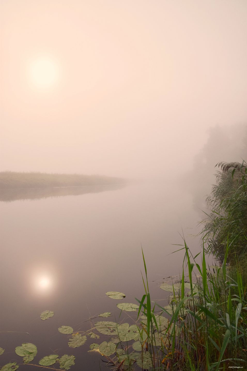 Foggy morning on the river.