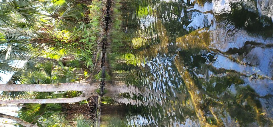 Calming River View